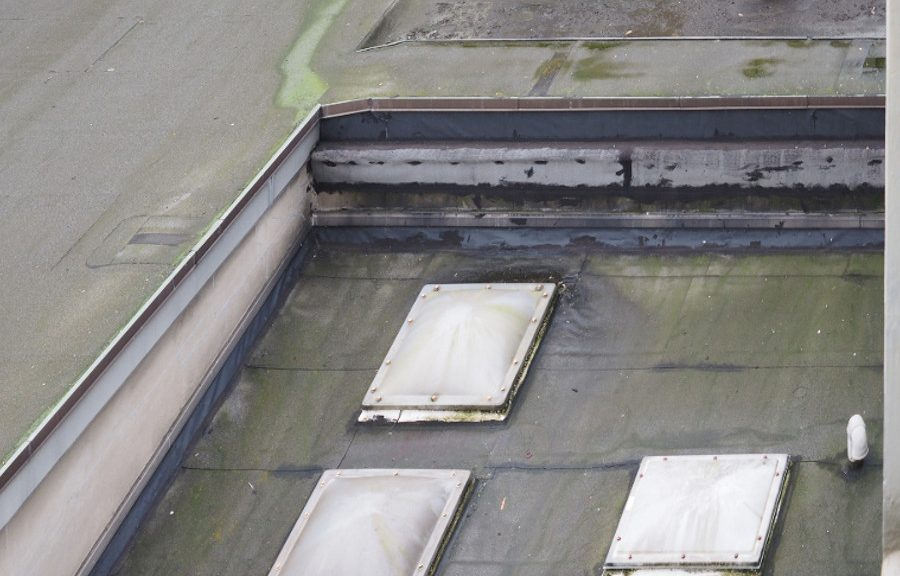 'Ponding Water Leads to Flat Roof Damage